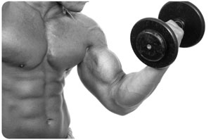 Gain 10 Pounds of Muscle