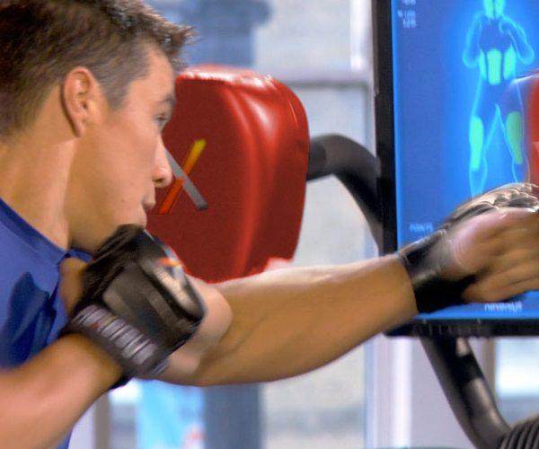 Nexersys Pro Model (NXS-P) Home Gym