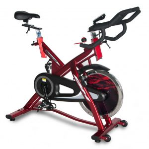 BH Fitness LK500IC Indoor Cycle